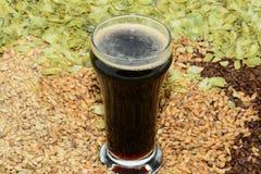 Cerveja de malte no vidro do provador fotografia de stock royalty free
