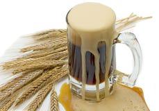 A cerveja derramou Fotografia de Stock