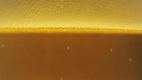 A cerveja derramou em um vidro do macro video estoque