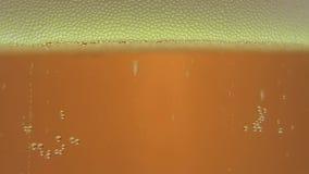 A cerveja derramou em um vidro do macro vídeos de arquivo