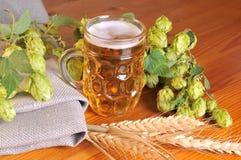 Cerveja e lúpulos imagens de stock