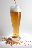Cerveja e malte Fotografia de Stock