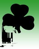 Cerveja e Shamrock verdes irlandeses Imagem de Stock Royalty Free