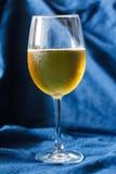 Cerveja em um cálice Fotografia de Stock Royalty Free