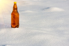 Cerveja em umas garrafas plásticas na neve Foto de Stock