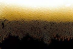 Cerveja escura Imagens de Stock