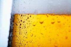 Cerveja fria Fotografia de Stock