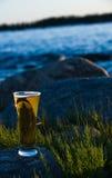 Cerveja fria Fotografia de Stock Royalty Free