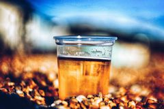 Cerveja fria agradável na praia Imagem de Stock Royalty Free