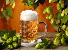 Cerveja fria e lúpulos Imagem de Stock Royalty Free