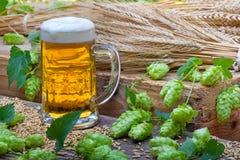 Cerveja Glas com cones de lúpulo Fotos de Stock