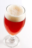 Cerveja inglesa vermelha irlandesa Foto de Stock