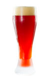 Cerveja inglesa vermelha irlandesa Fotografia de Stock