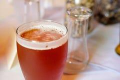 Cerveja IPA do ofício no copo de água fotos de stock royalty free