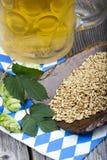 Cerveja, lúpulos e grão, ingredientes da fabricação de cerveja Fotografia de Stock Royalty Free