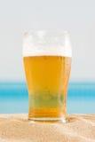 Cerveja na praia Imagens de Stock