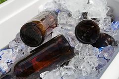 Cerveja no gelo Imagens de Stock Royalty Free