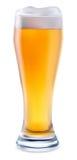 Cerveja no vidro Foto de Stock Royalty Free