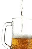 Cerveja no vidro Fotos de Stock