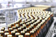 Cerveja que enche-se em uma cervejaria - correia transportadora com garrafas de vidro foto de stock