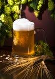 Cerveja, trigo e lúpulos fotografia de stock