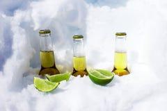 Cervejas frias Imagem de Stock