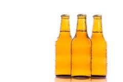 Cervejas isoladas frescas Fotografia de Stock Royalty Free