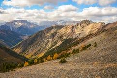 Cervejeiro Creek Landscape na queda, Columbia Britânica Canadá Fotografia de Stock