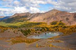 Cervejeiro Creek Tarn Landscape na queda, Columbia Britânica Canadá Fotografia de Stock