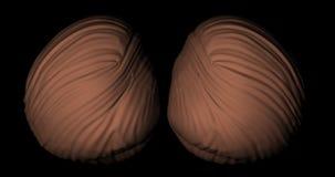 Cervelletto di un corpo umano nella rotazione illustrazione vettoriale