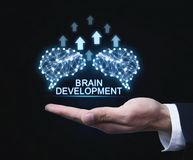 Cervelli con le frecce Intelligenza artificiale e sviluppo concentrati fotografie stock libere da diritti