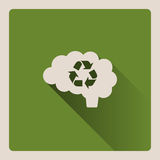 Cervello che pensa nell'illustrazione riciclata su fondo verde con ombra Immagini Stock Libere da Diritti
