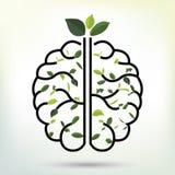 Cervello con la foglia verde Illustrazione nera di vettore del profilo Fotografia Stock Libera da Diritti