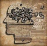 Cervello e numeri Fotografia Stock Libera da Diritti