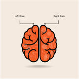 Cervello sinistro e simbolo del cervello giusto, segno di creatività, illustrazione vettoriale