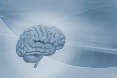 Cervello su priorità bassa astratta Fotografia Stock Libera da Diritti