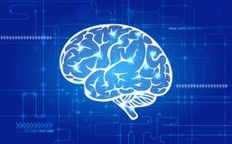 Cervello umano astratto Fotografia Stock Libera da Diritti