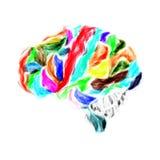 Cervello umano dipinto con gli acquerelli illustrazione di stock