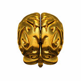 Cervello umano dorato Fotografia Stock