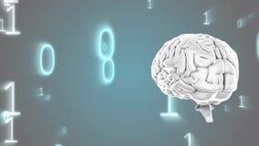 Cervello umano e codici binari illustrazione vettoriale