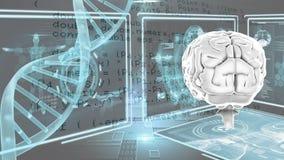 Cervello umano e DNA illustrazione di stock