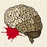 Cervello umano e una goccia di sangue Immagini Stock