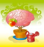 Cervello un albero Fotografia Stock Libera da Diritti