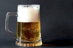 Vidrio de cerveza espumosa Fotos de archivo libres de regalías