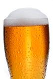 Cerveza Fotos de archivo libres de regalías