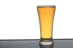 Cerveza. Fotografía de archivo
