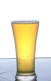 Cerveza. Imagenes de archivo