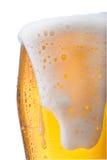 Cerveza Fotografía de archivo