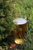 Cerveza bávara. Fotografía de archivo libre de regalías