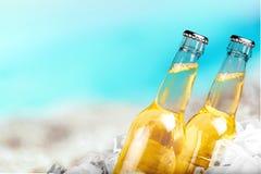 Cerveza, botella de cerveza, hielo imagen de archivo